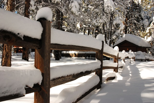Thick Snow on a wooden fence