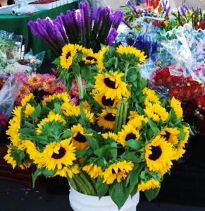 2011 La Jolla Open Aire Market_Flowers