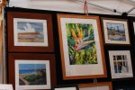 2011 La Jolla Open Aire Market Paintings